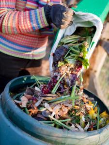 iStock-9013928_Kitchen-Waste-Composting_s3x4.jpg.rend.hgtvcom.1280.1707